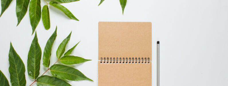 Eco-Friendly Ways To Promote Your Business